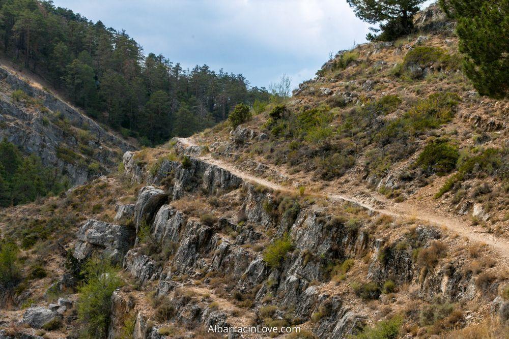 Fotografia del sendero en la Ruta Barranco de la Hoz