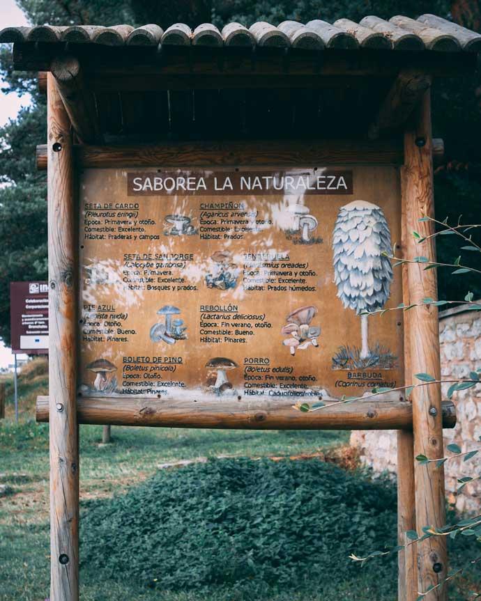 Foto de un cartel informativo sobre las setas en la Sierra de Albarracin