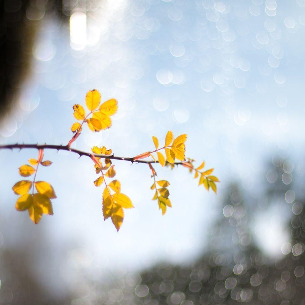 El tiempo en Albarracin según la época del año