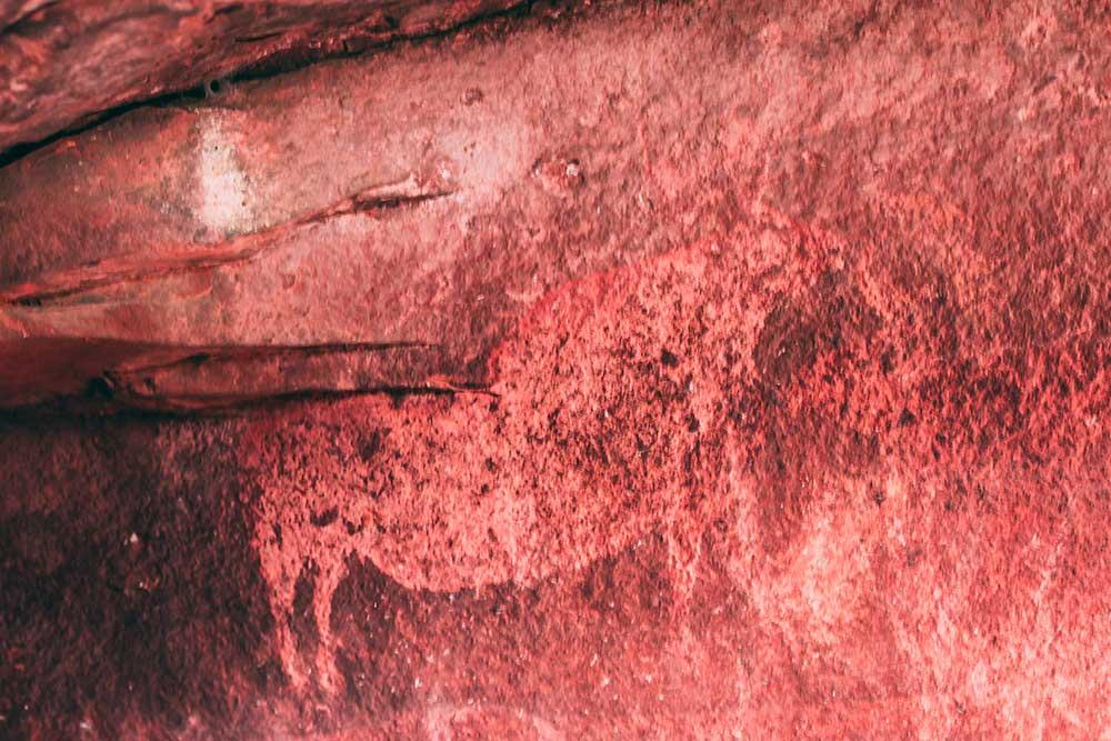 Imagen del arte rupestre levantino