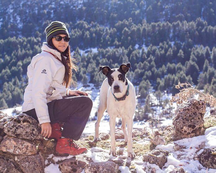 Imagen de un perro en el campo con una persona