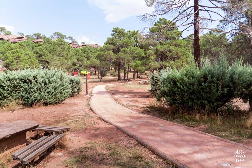 Fotografia de la zona infantil y merendero en el Parque Natural