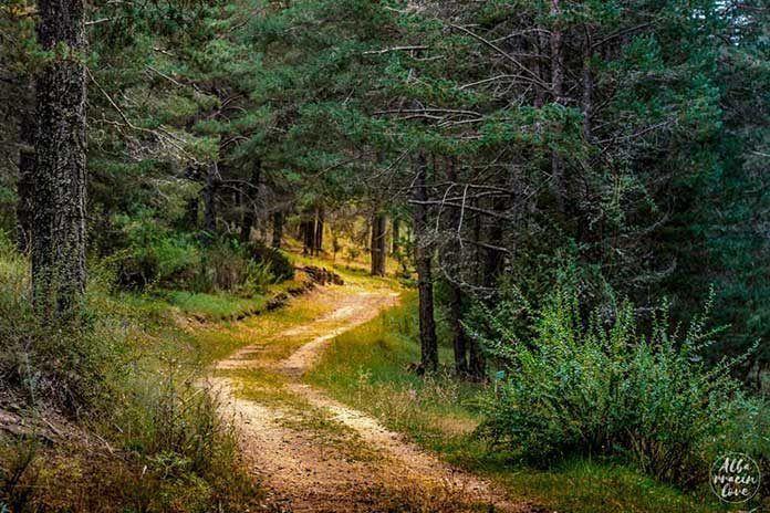 plan9-que-ver-en-albarracin-senderismo
