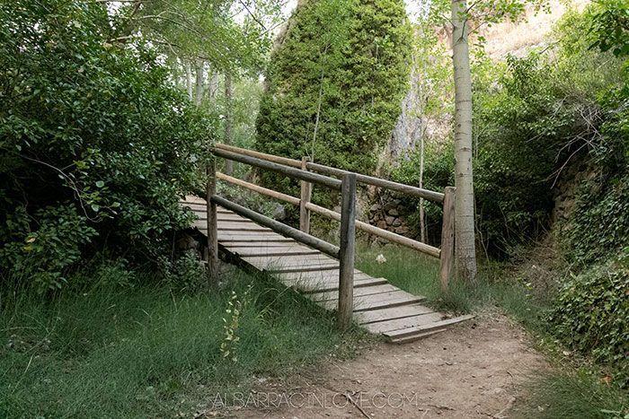 Imagen de un puente de madera en el sendero del Guadalaviar