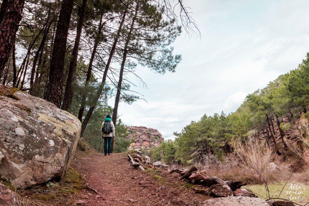 Fotografia de senderismo en los pinares de rodeno de Albarracin